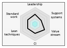 Lean Maturity Audit